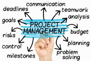 Project Control 2_bg